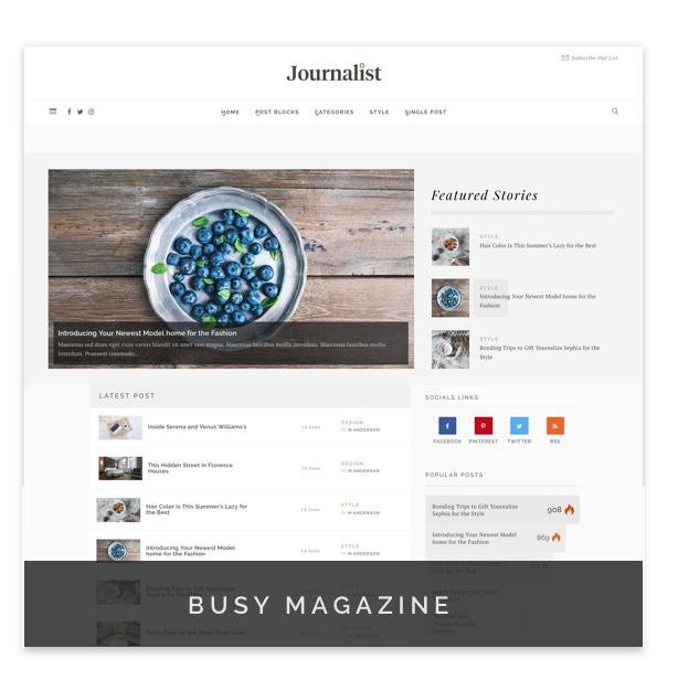 Journalist - WordPress Blog & Magazine Theme - 9